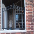 ornamental iron window gate